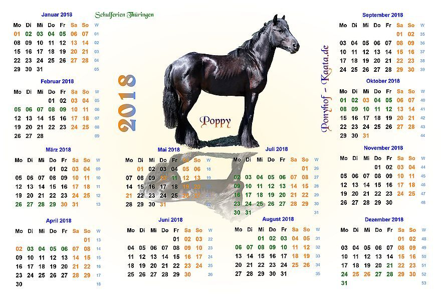 der pferdepension kalender die pferdepension kaata pferde in artgerechter haltung. Black Bedroom Furniture Sets. Home Design Ideas